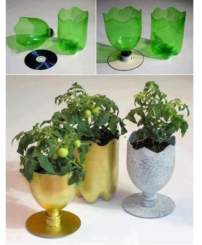 Ý tưởng làm chậu hoa từ chai nhựa