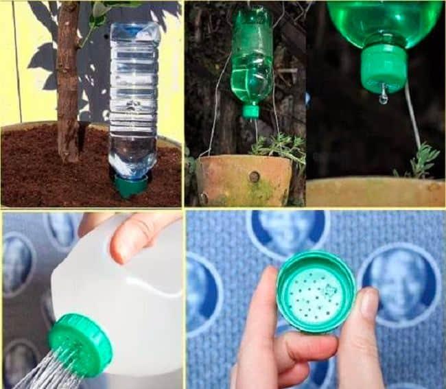 Bình tưới cây từ chai nhựa