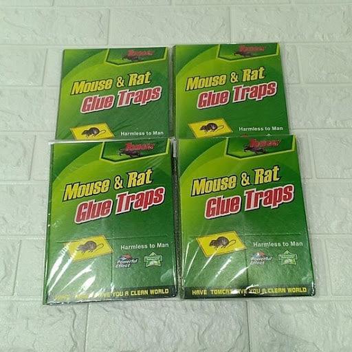 Keo Mouse & Rat Glue Traps